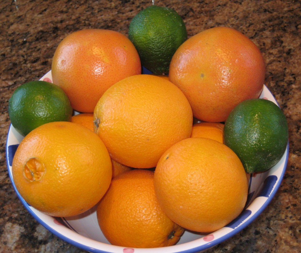 Red Grapefruit, navel oranges and limes - colors for a winter day.