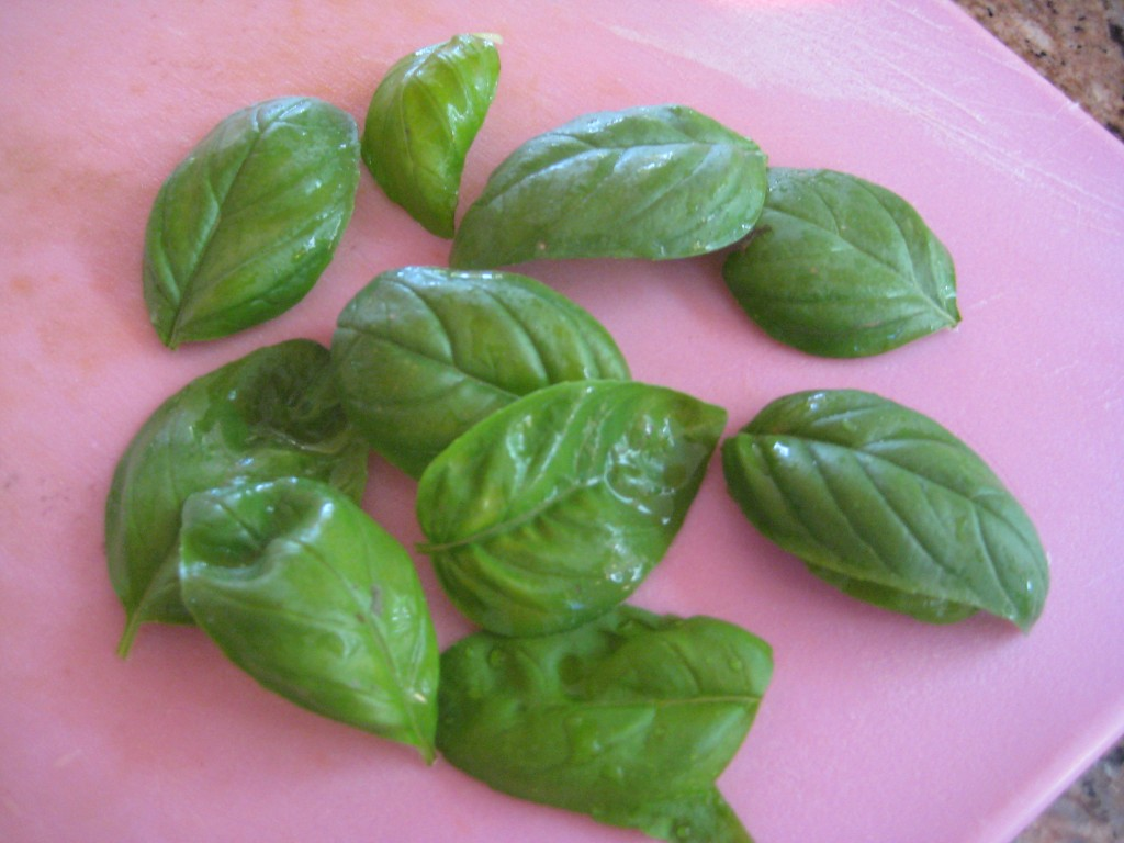 Basil is an annual in the Mountain West.